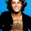 thumbs andy gibb Shameless nostalgia   the 1970s with a Ravioli Smile