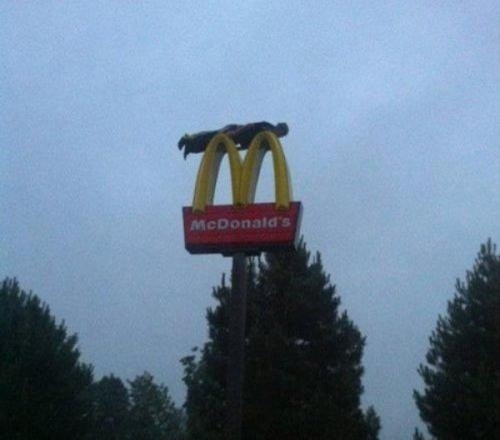 micky d planker All life is out there