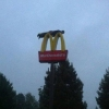 thumbs micky d planker All life is out there