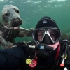 thumbs animal 4 Animal photobombs   the best of 2012