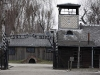 thumbs 5557631 Auschwitz Birkenau   Then and now in photos