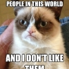 thumbs meme grumpy cat Memes   the Top 10 of 2012