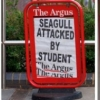 thumbs seagulls Modern Britain described in 10 photos