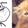 thumbs rage faces 13 Rage faces   with CATS