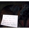 thumbs tumblr m8z7y7oszq1re4ne0o1 500 Dog Shaming: because your dog is shamed (photos)