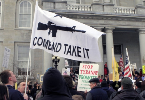 15577096 Gun Appreciation Day: the best banners carried at state capitols
