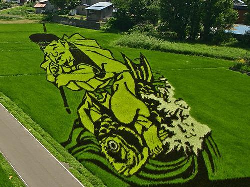 japanese-rice-field-art-0