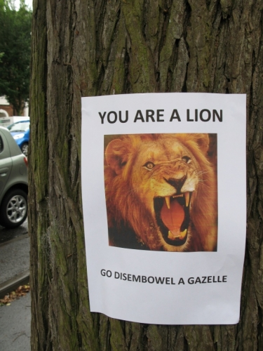 lion Motivational animal photos (with tree support group)