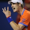 thumbs 12606595 Andy Murray loses to Novak Djokovic in Australian Open   photos