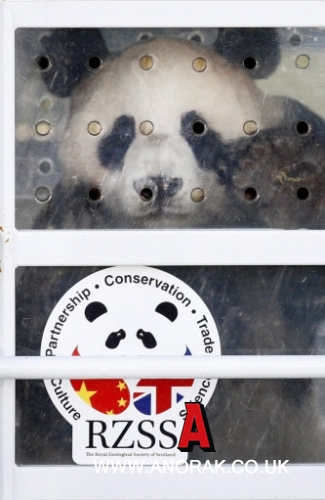 12220152 Scotland Pays For Chinese Panda Bears With Fishy Salmon And Turning A Blind Eye To Norways Nobel Woes