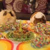 thumbs pet birthdays 3 The 10 best pet birthday party photos ever