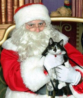 CAT BITES SANTA CLAUS