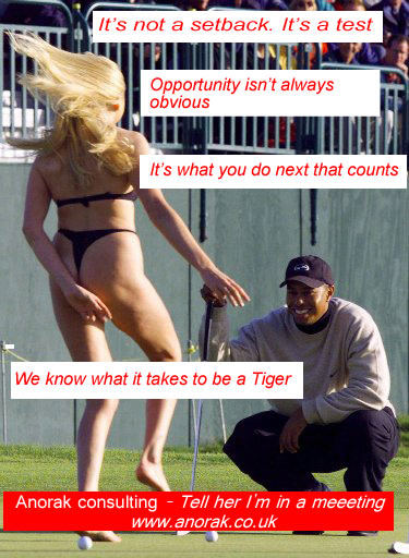 tiger-anorak-consulting