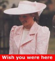  Royals Ban Princess Diana