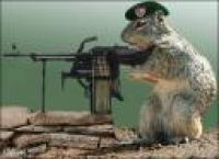 spysquirrel.thumbnail Winning The Iraq War With Maneating Badgers And Spy Squirrels