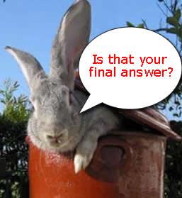 rabbit-thumb.jpg
