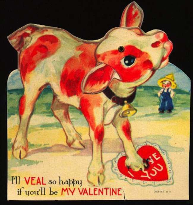 valentine day dog puns