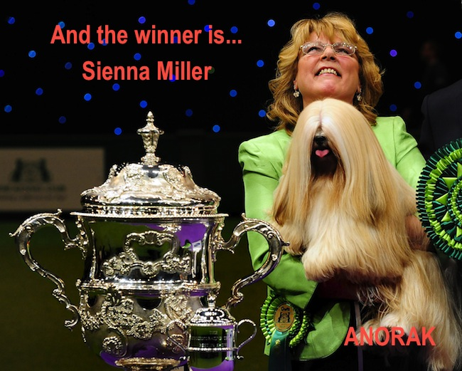 PA 13025582 Sienna Miller wins Crufts
