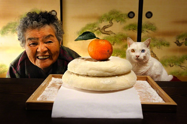 Fukumaru 2 The best photos of Misao and the cat called Fukumaru