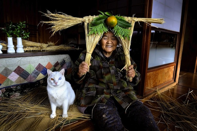 Fukumaru 5 The best photos of Misao and the cat called Fukumaru
