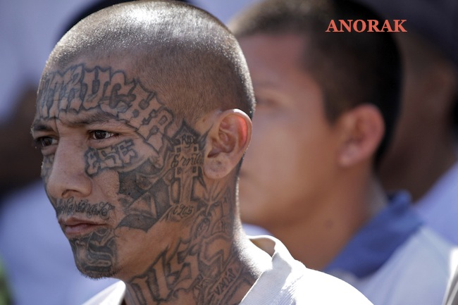 PA 13156690 In photos: the tattooed faces of MS 13 and 18th Street gang members