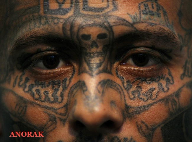 PA 3481919 In photos: the tattooed faces of MS 13 and 18th Street gang members
