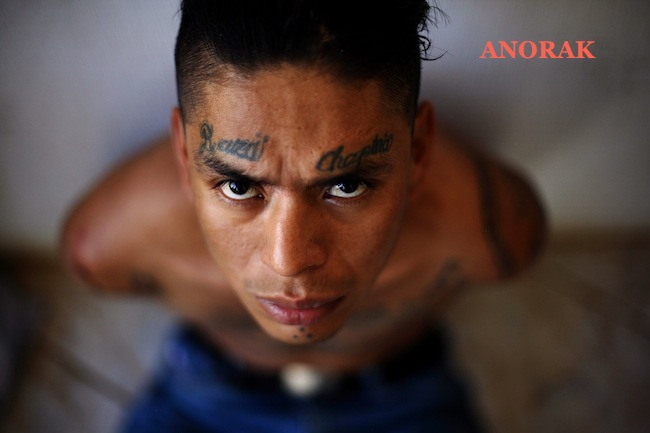PA 4596704 In photos: the tattooed faces of MS 13 and 18th Street gang members