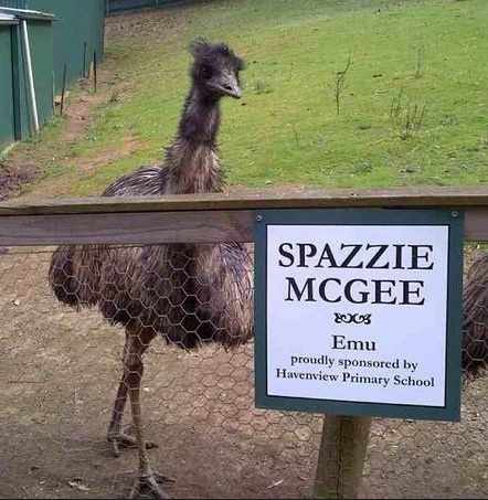 Spazzie McGee School names sponsored emu Spazzie McGee