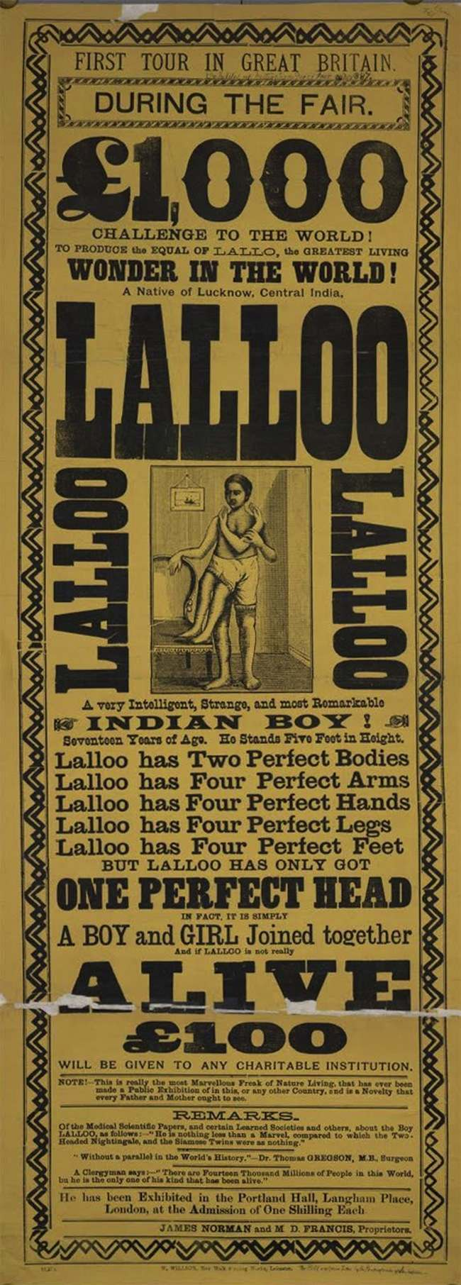 lalloo Highlights from the Victorian circus freak show (posters)