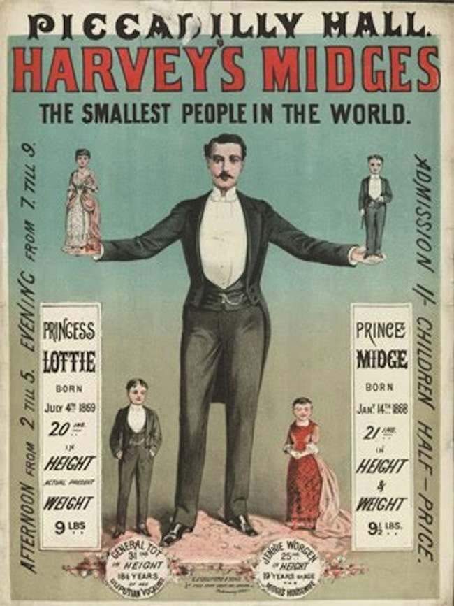 midges Highlights from the Victorian circus freak show (posters)