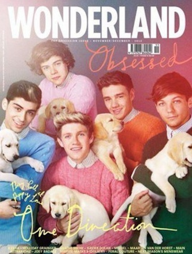 one directions wonderland One Direction stroke puppies