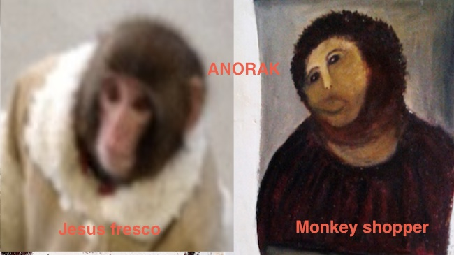 fresco monkey Monkey in sheepskin coat and nappy captured in Ikea