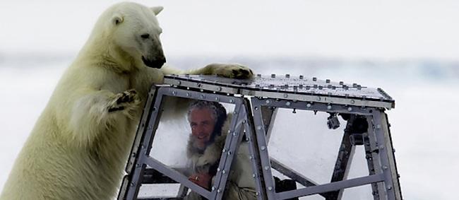Gordon Buchanan  Polar Bear tries to mate with BBC nature presenter (video)