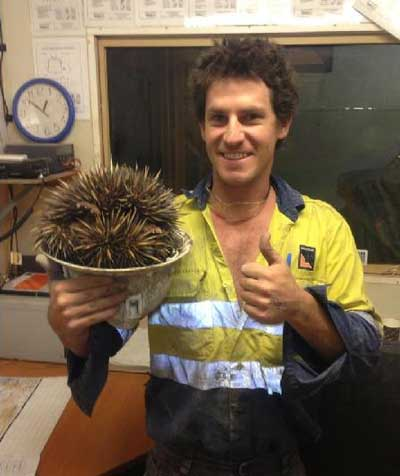 Munro Hardy Echidna news: The little bastard crapped in my hat
