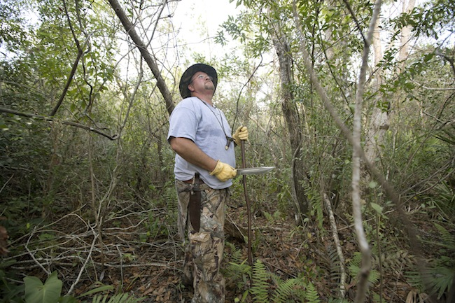 PA 15521430 On the Florida Everglades python hunt (photos)