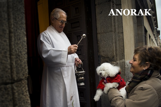 PA 15563822 In photos: Spains San Anthony Festival   the blessing of the pets