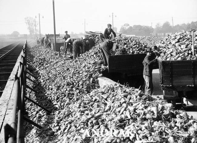 PA 6926494 Sugar rationing in World War 2   photos