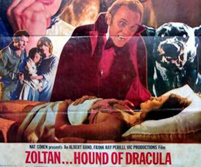 zoltan hound of dracula poster1 Hugh Hefner in birthday cakes: the sponge and Viagra icing photos