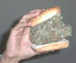 chicken weed Man arrested for selling half eaten chicken sandwich to cop looking to buy marijuana
