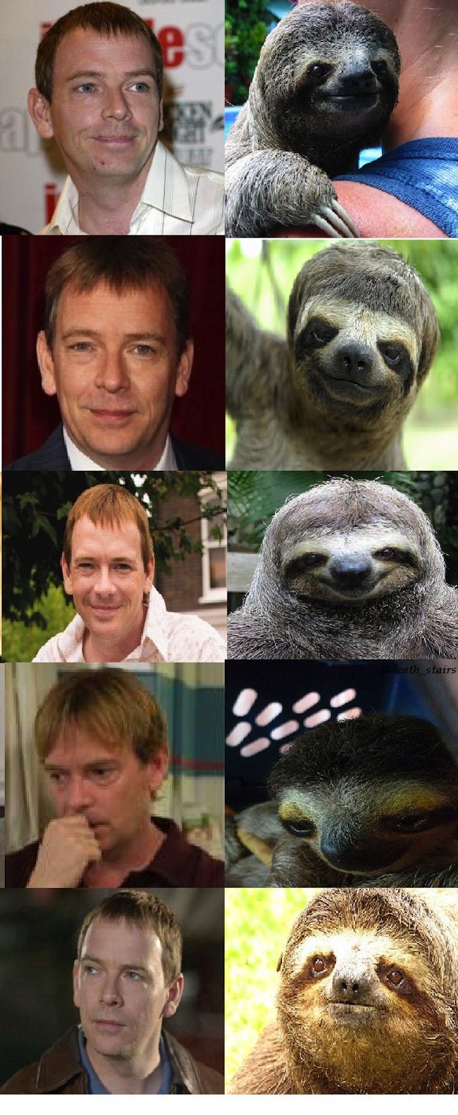 sloths that look like Ian Beale EastEnders lifer Ian Beale looks like a sloth