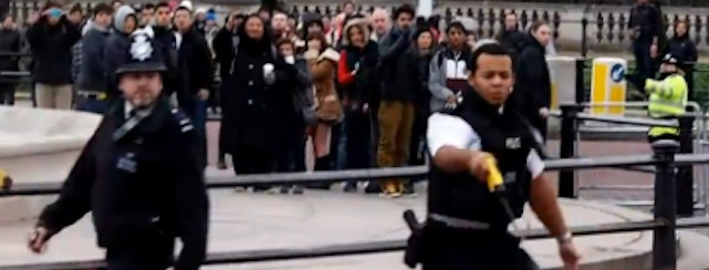 taser buckingham palace Police taser man outside Buckingham Palace (video)