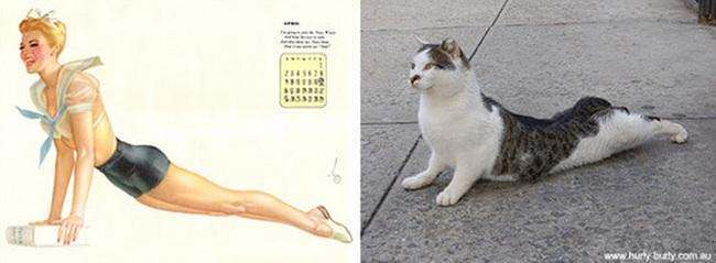 cat pin up girls 14