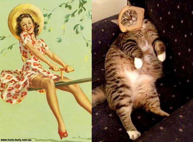 cat pin up girls 2