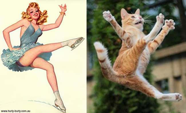 cat pin up girls 20