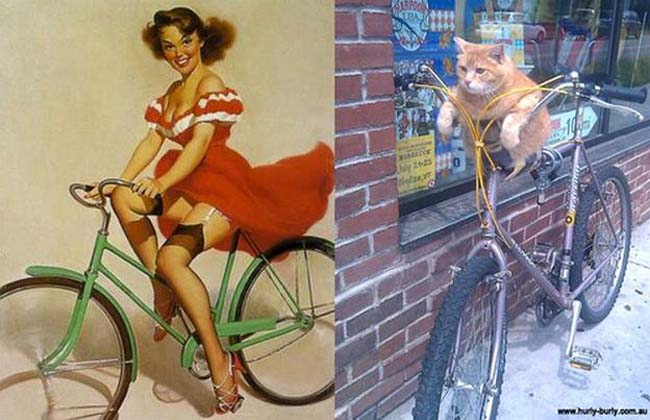 cat pin up girls 7