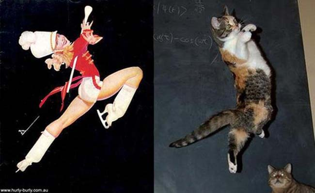cat pin up girls 9