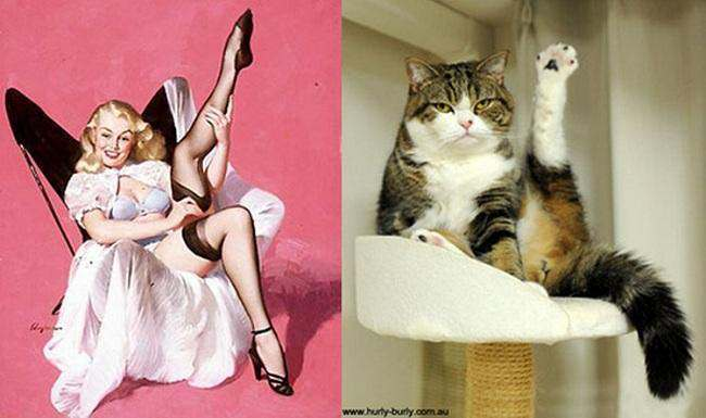 cat pin up girls