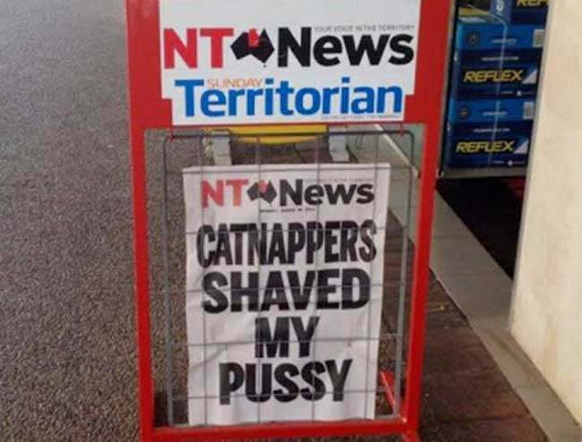 cat snatcher Shaven cat creates pun opportunity in Australias Northern Territory