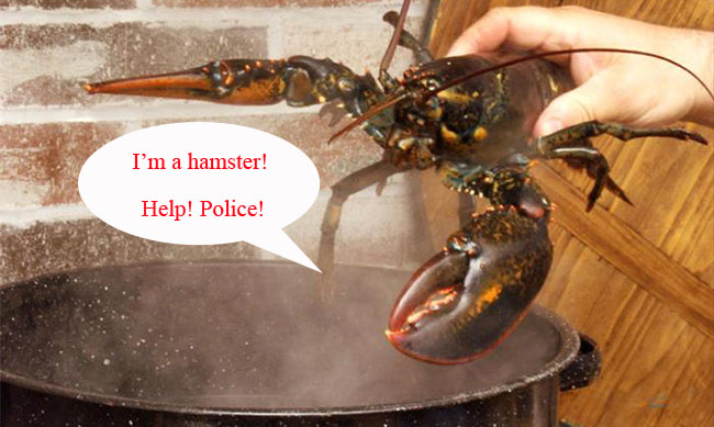Placing a Lobster in Boiling Water