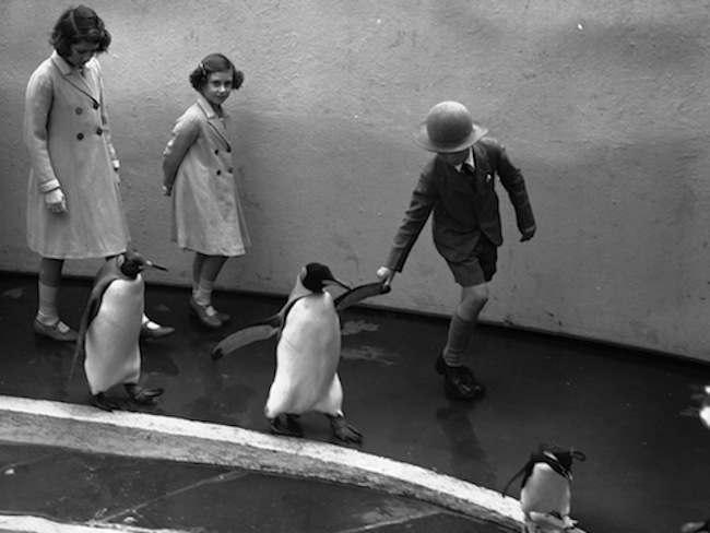 PRINCESSES VISIT PENGUINS